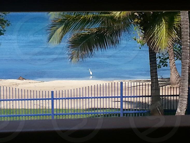 Cabo Rojo Puerto Rico photo