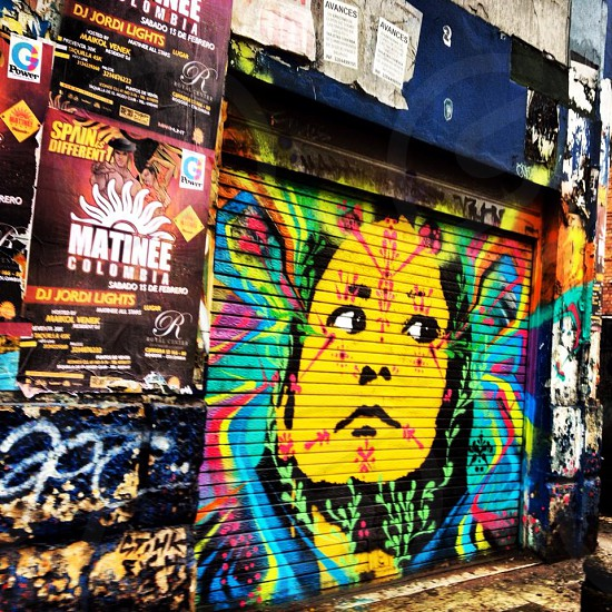 Bogotá street art (artist: Stinkfish) photo