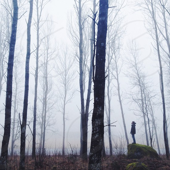 man standing on rock photograph photo