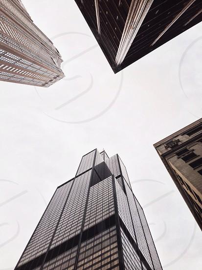 white skyscraper photo