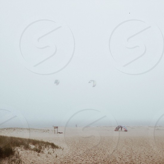 people doing para gliding over shore covered with fog photo