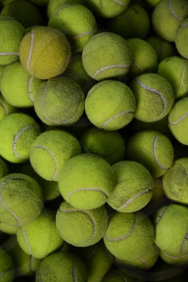 pail of neon green tennis balls photo