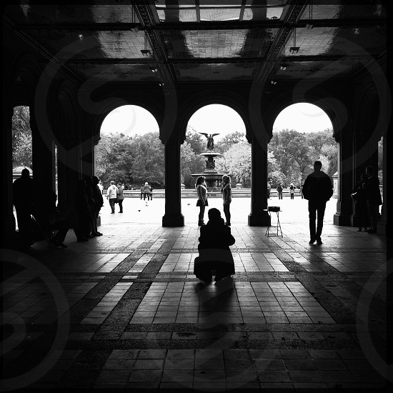 people silhouette  photo