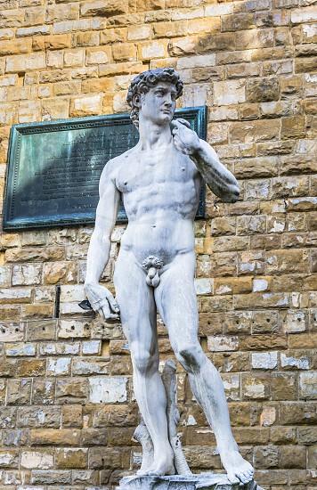 the famous Michelangelo's David Statue in Piazza della Signoria Florence Italy photo