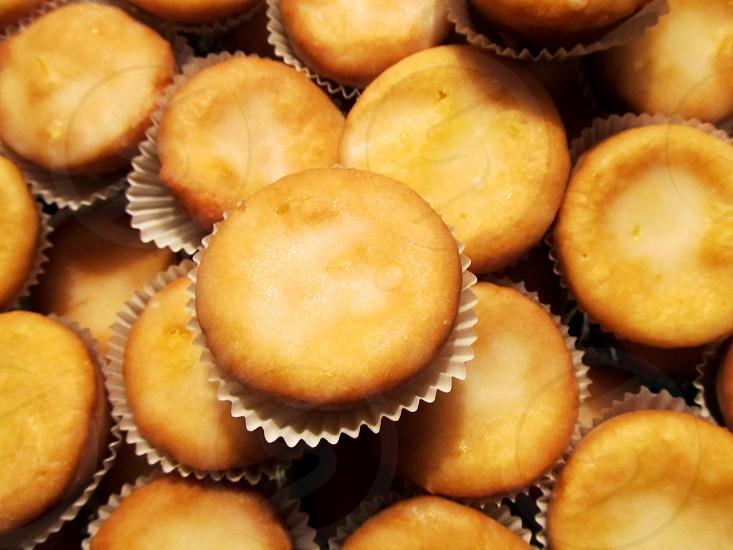 Lemon blossom muffins photo