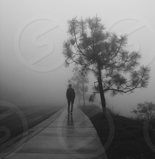 In the still of the fog photo