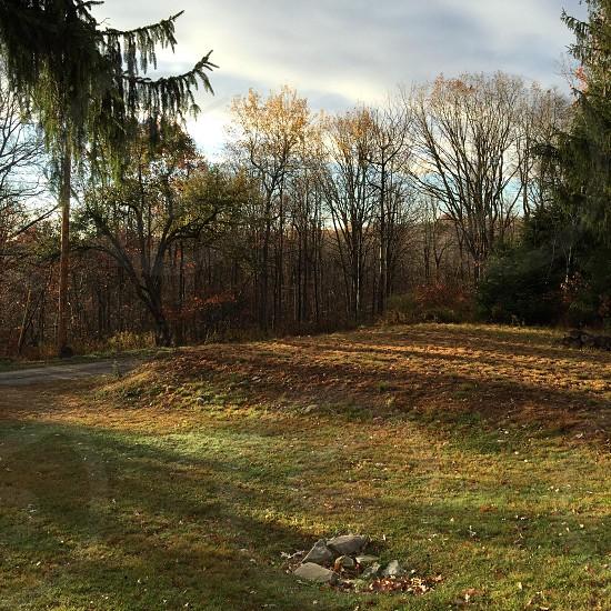 A fall morning in the Poconos.  photo