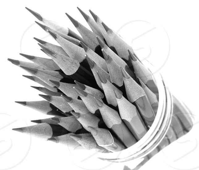 Black and white photo of very sharp pencils photo