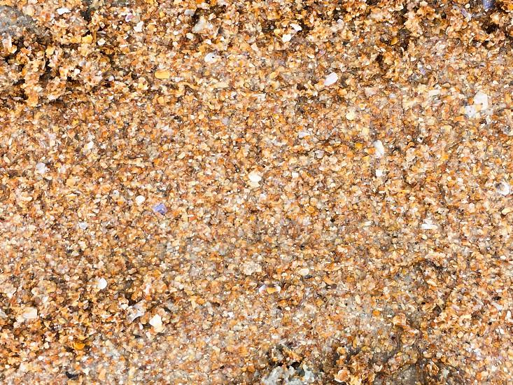Flagler Sand photo
