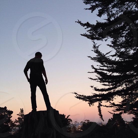 man standing in tree stump photo photo