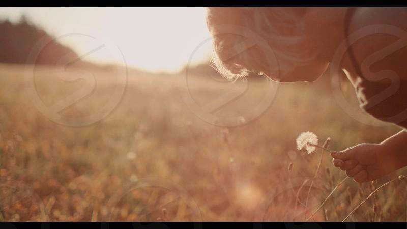 girl holding puffy dandelion seeds brown grassy field photo