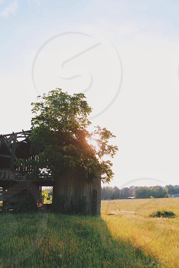 brown wooden barn house photo