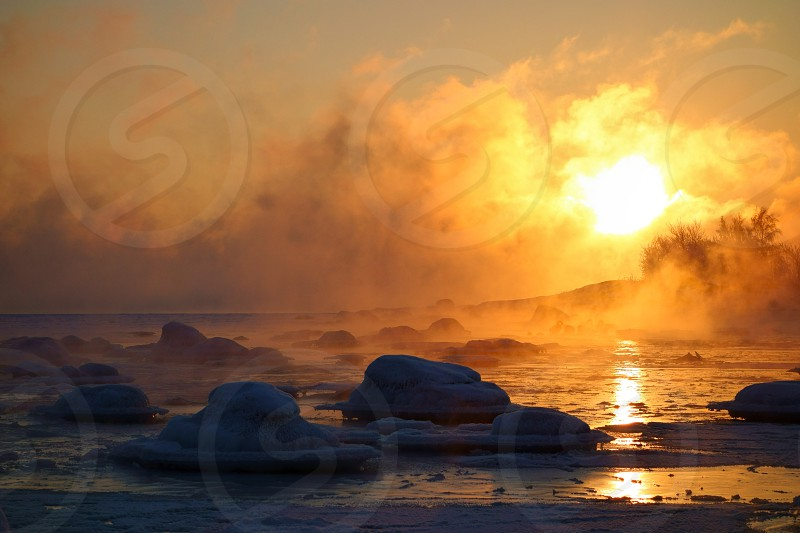 Swans in last open water in extremely cold and misty morning with sea smoke from the Baltic Sea at sunrise time in wintery Lauttasaari Helsinki Finland. photo