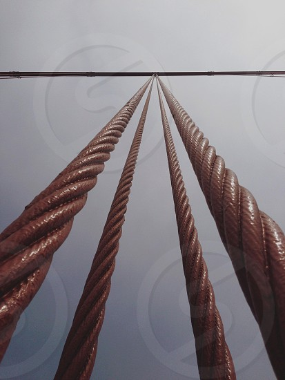 brown cable photo