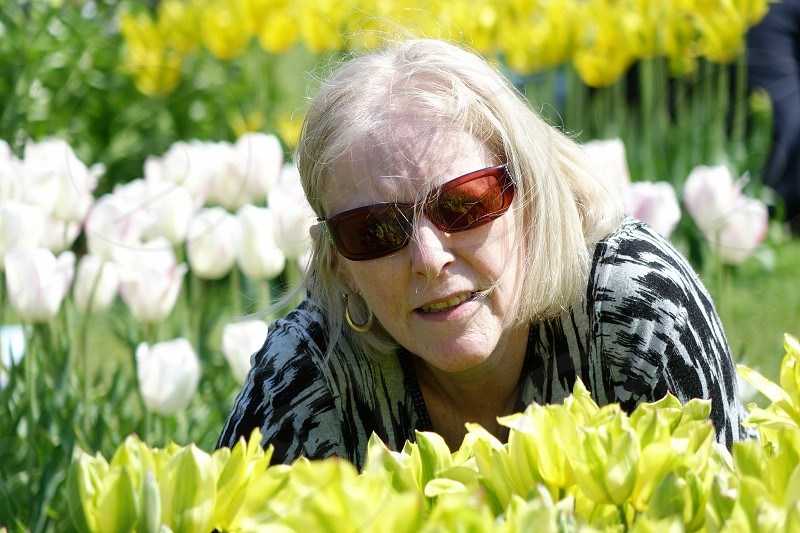 Blonde haired middle aged female crouching amongst spring flowers... photo