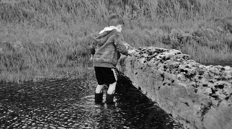 Little Boy Exploring  Steilacoom WA photo