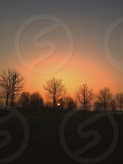 view of sunset and green grass field photo