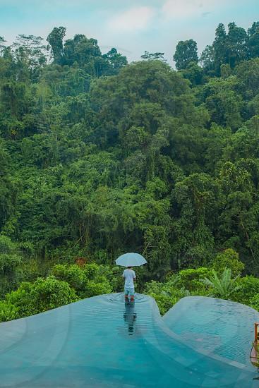 Green umbrella mountains  photo