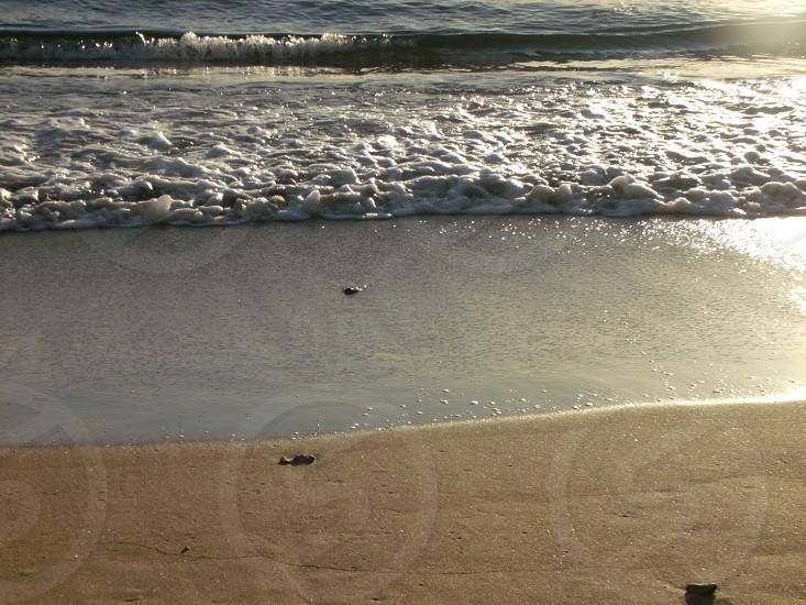 A nice beach. photo