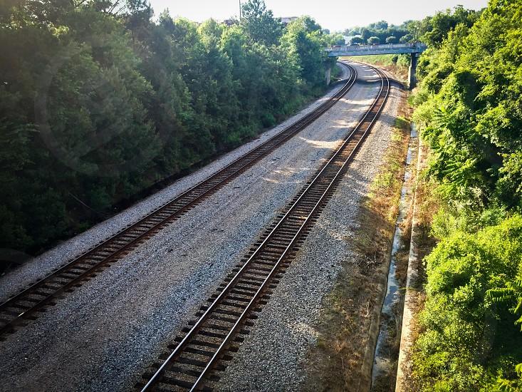 Railroad Train Tracks Trees Bridge Columbia South Carolina photo