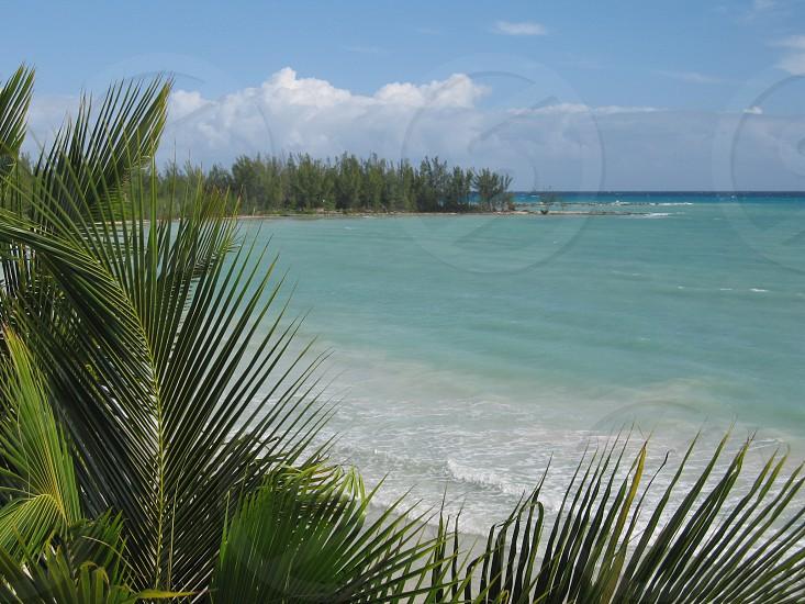 Bahamas005 photo