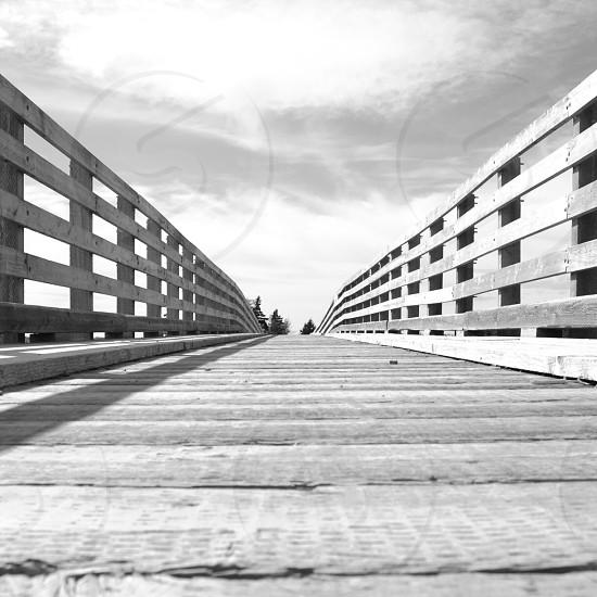 brown wooden foot bridge photo