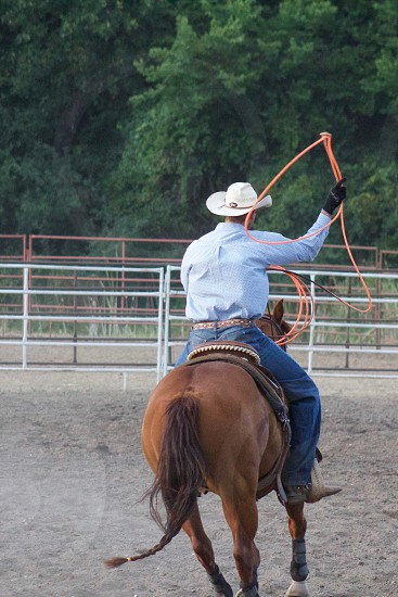 A lone rodeo rider practices with a lasso in an outdoor corral before competing  photo