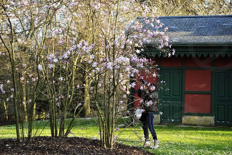 man aiming camera the flowering tree near green and red house photo