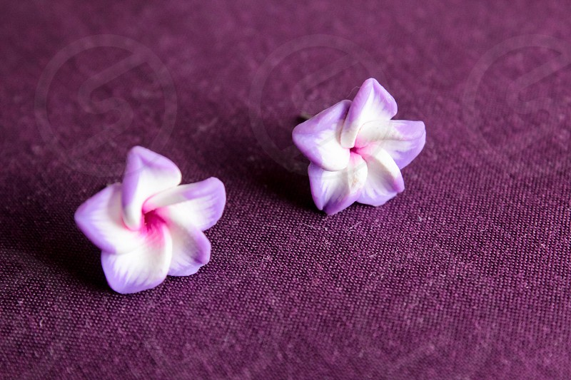 Purple flowers earrings  photo