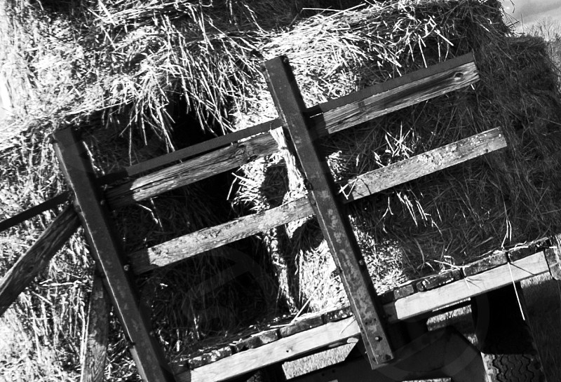 od hay wagon black white  photo
