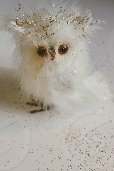 White feather owl glitters craft holiday season  photo