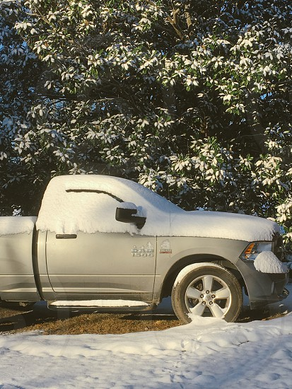 Snow in Alabama! photo