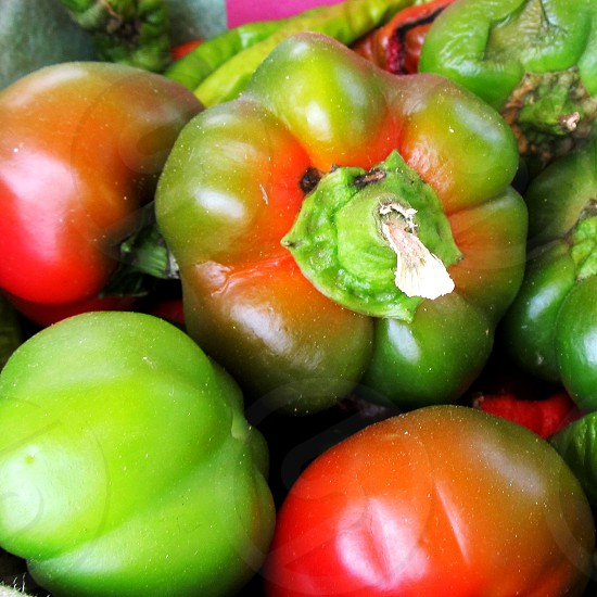 Red and green bell peppers photo