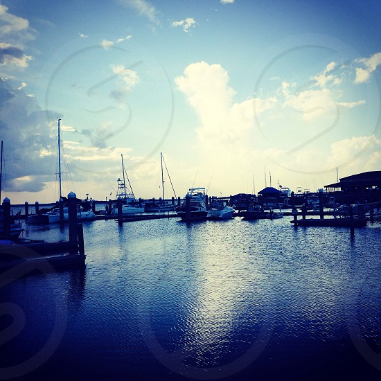 Day at harbor  photo