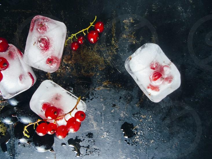 Frozen cranberriesfresh cranberries photo