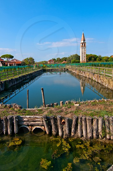 "Venice Burano Mazorbo vineyard with ""campanile "" belltower of Saint Caterina on the background photo"