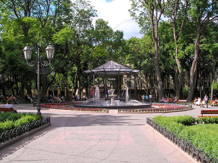 Odessa city garden photo