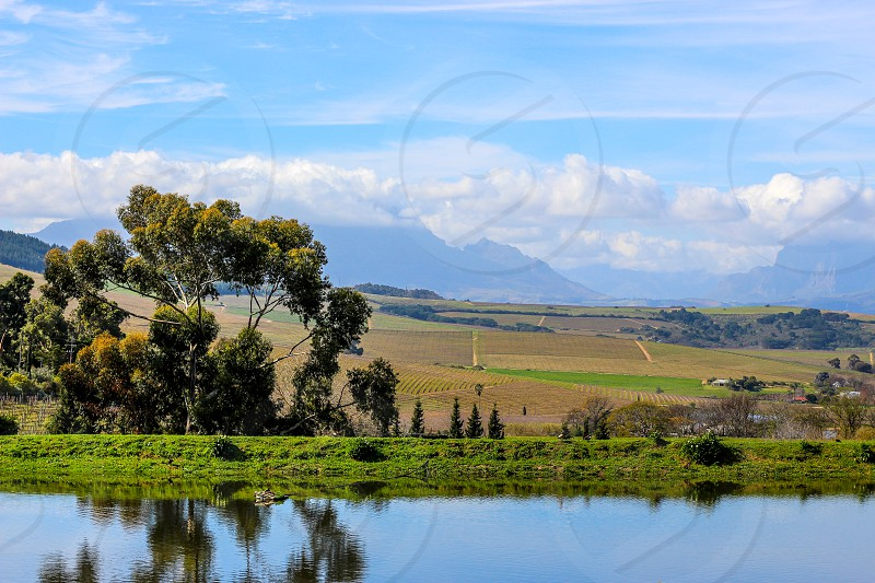 View from a wine farm photo