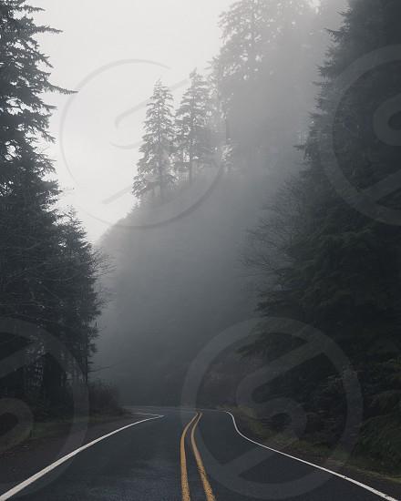 Oregon Coastal roads  photo