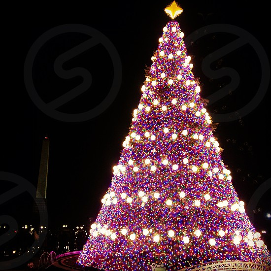 pink and white lit christmas tree photo
