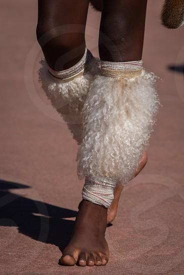 Detail from the animal hides cultural Zulu dancers bind around their calves. photo