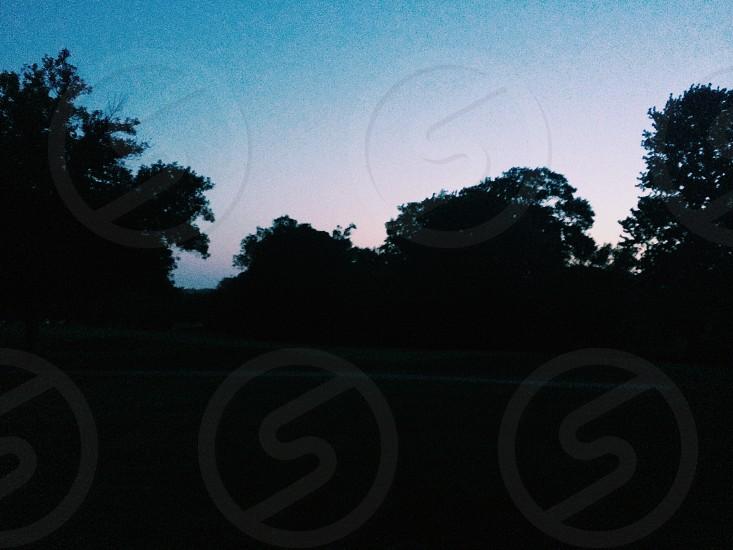 Backyard@night photo