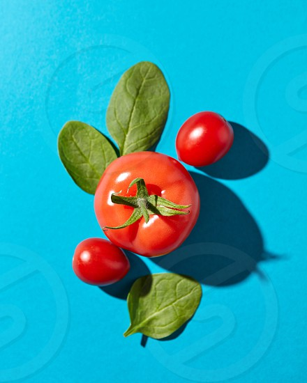 Tomatoes with green stems and spinach leaves presented on a blue background with reflection of the shadows. Organic vegetables. Flat lay photo