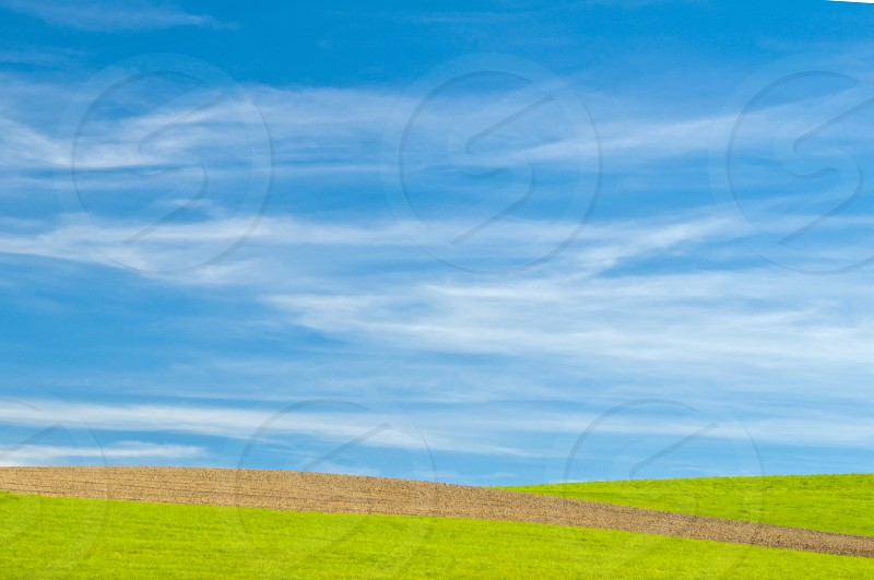 green with blue sky photo