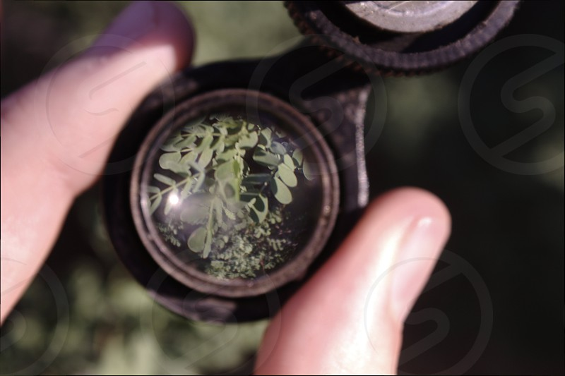I found this little magnifying contraption while on a stroll and decided to make use of it. photo