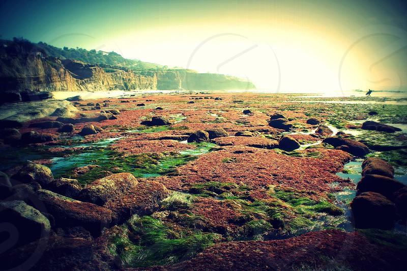 Sunset Cliffs surfer  photo