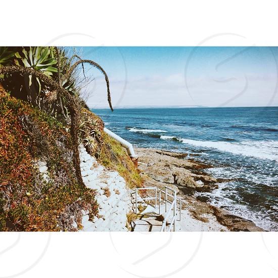 Shell Beach  photo