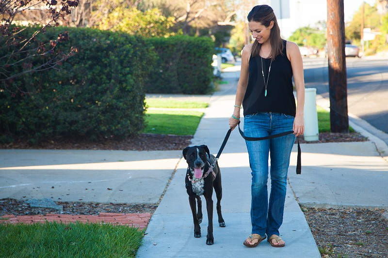 woman standing with black american pitbull terrier photo