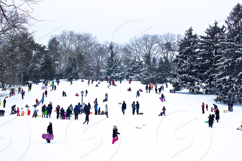 people on snow photo