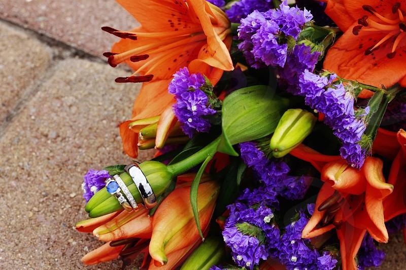 orange purple green petaled flower bouquet photo